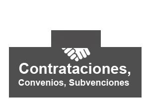 Contrataciones, convenios, subvenciones y costes de los servicios.